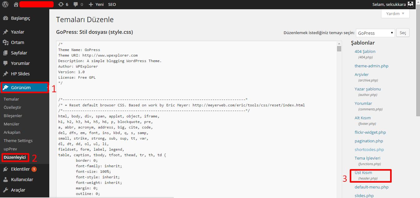 WordPress, < head > < /head > arasına kod eklemek…